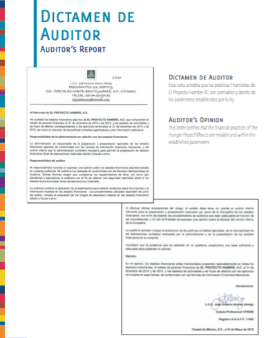 dictamen-auditor-2014-img
