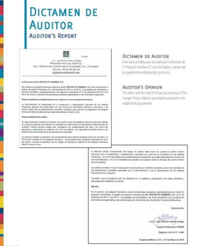 dictamen-auditor-2014-img