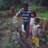 La importancia de la pequeña y mediana agricultura  para garantizar el derecho a laalimentación