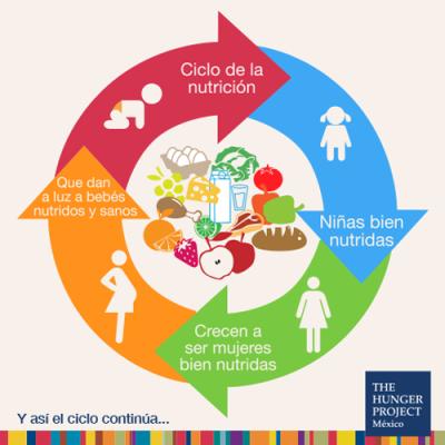 ciclo_nutricion